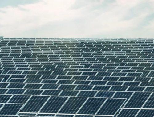 Chinchilla Baking Board Solar Farm