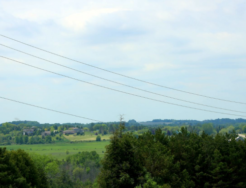 Powerlines And Trees On Your Property
